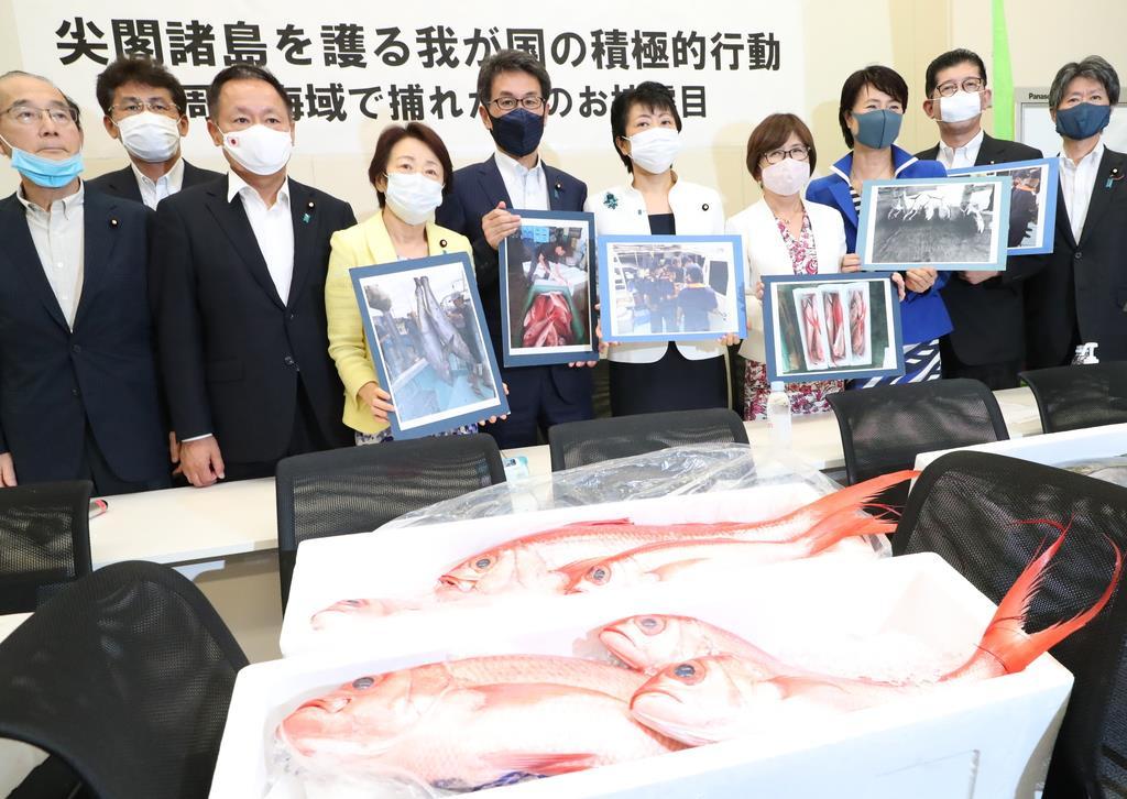 尖閣諸島の生態系調査に向けた法整備を訴えた自民党の議員ら。尖閣周辺で取れた魚も披露された=6月25日、国会内