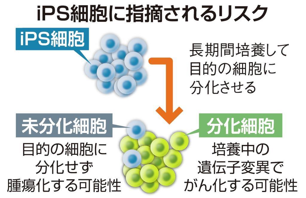 【クローズアップ科学】科学技術で日本を支える最先端研究にフォーカスをあてる